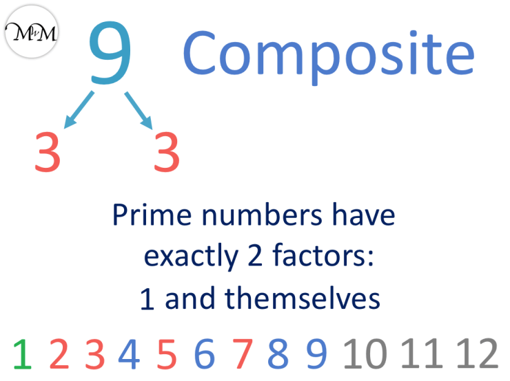 9 is not a prime number it is 3 times 3
