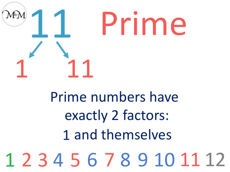 11 is a prime number