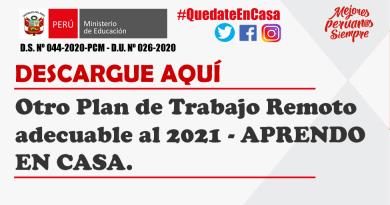 Otro Plan de Trabajo Remoto adecuable al 2021 – APRENDO EN CASA.