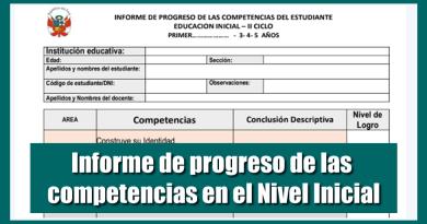 Informe de progreso de las competencias en el Nivel Inicial