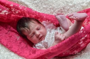 Math Willems - Newborn