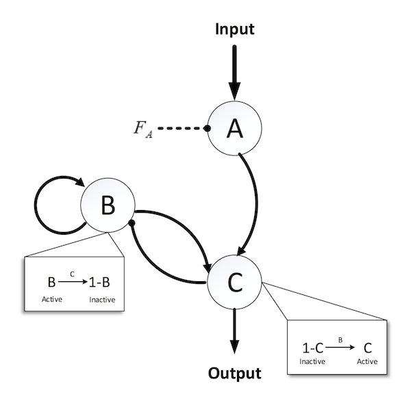 MPCC Solution of Genetic Regulatory Circuit Design
