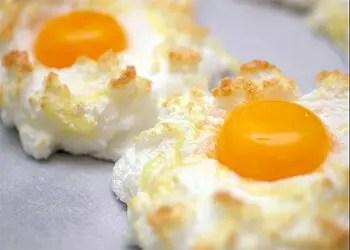 φωλιές αυγών