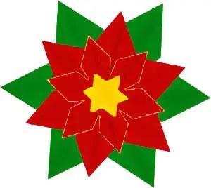 Αλεξανδρινό διακοσμητικό λουλούδι των Χριστουγέννων