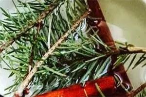 Χριστουγεννιάτικο άρωμα