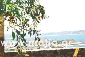 Νάξος - Κυκλάδες - Αιγαίο - Ελλάδα