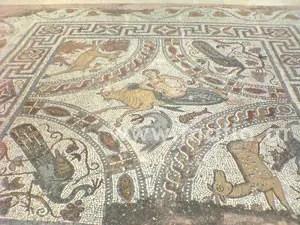 naxos 13 - Νάξος - Κυκλάδες - Αιγαίο - Ελλάδα