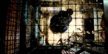 Πλανήτης των Πιθήκων: η Εξέγερση – Rise of the Planet of the Apes – 2011