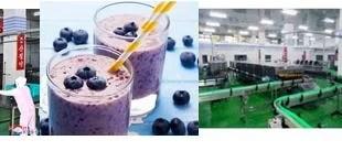 RPDC; L'usine de boissons à base de cassis