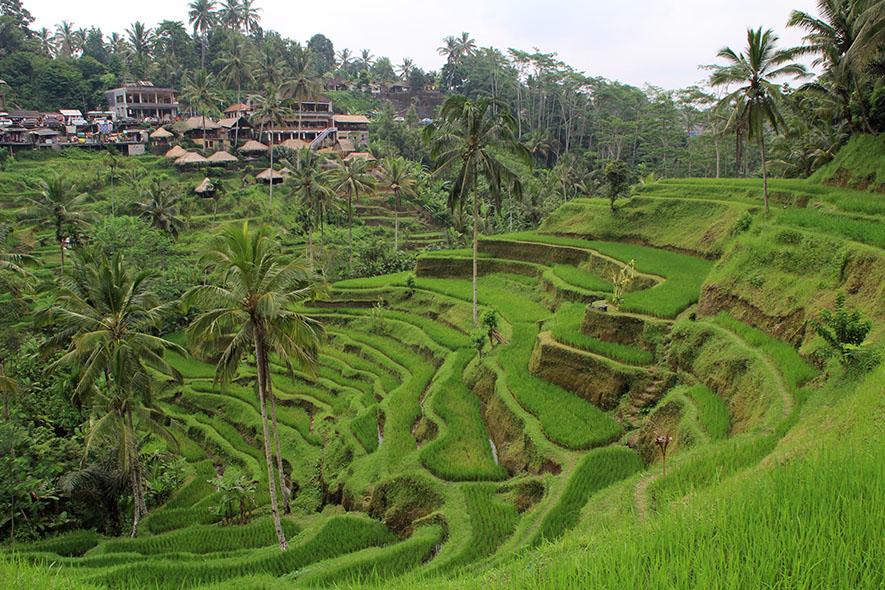 Bali | Matkalla Maailman Maisemiin