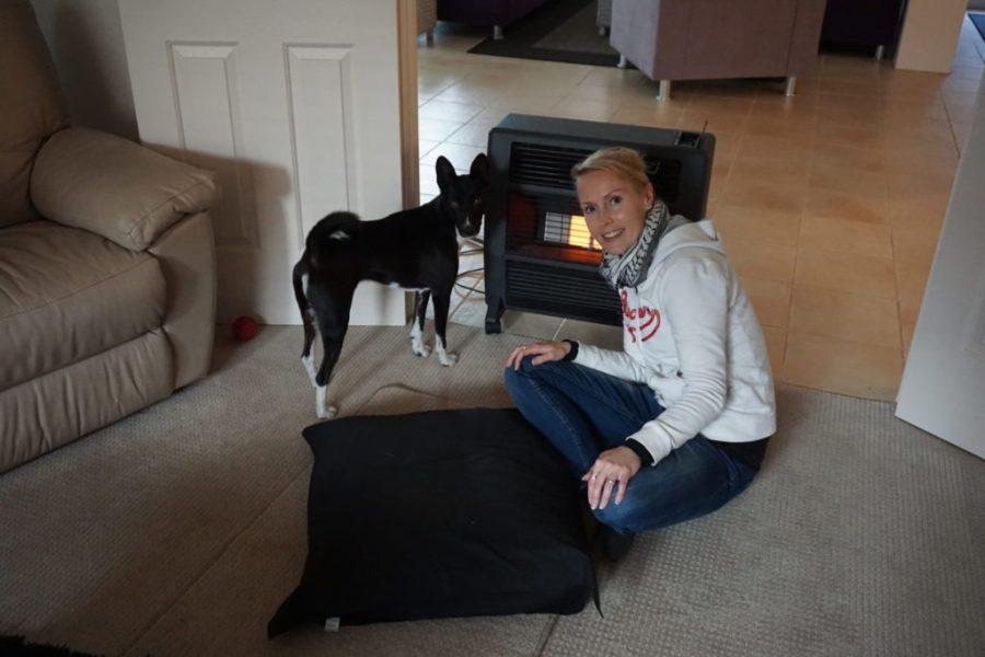 Ilmaista asumista matkoilla - house & pet sitting