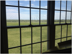 Brull window view