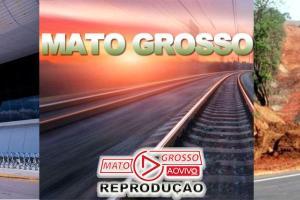 Aceleração do desenvolvimento de Mato Grosso e outros Estados passa pela mão da privatização 65