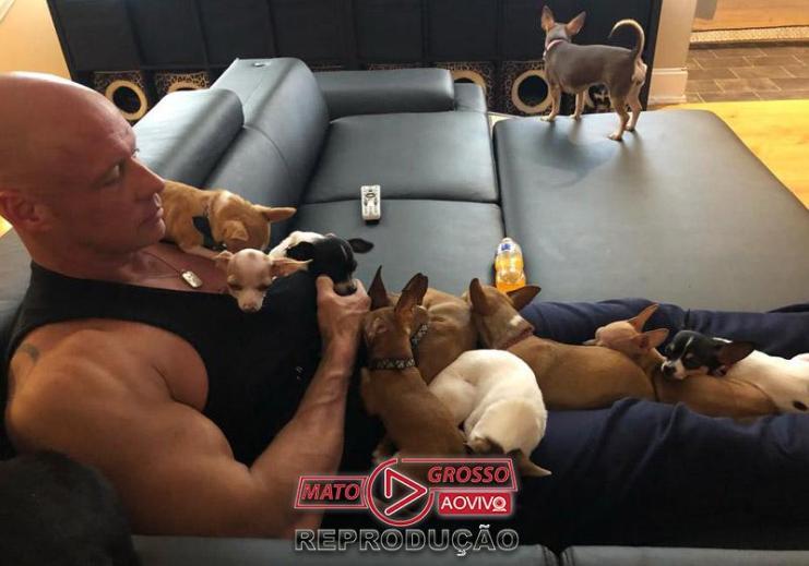 Bobby Humphreys e os cães - Foto: Facebook