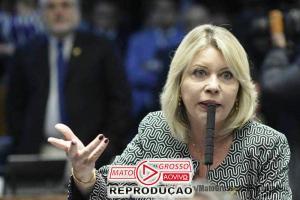 Relatório de Selma Arruda que permite demissão de servidor público por mal desempenho é aprovado no Senado 68
