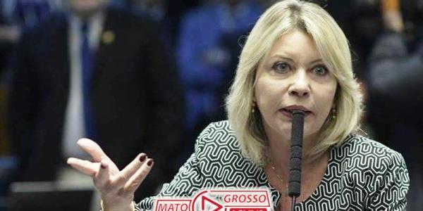 Relatório de Selma Arruda que permite demissão de servidor público por mal desempenho é aprovado no Senado 38