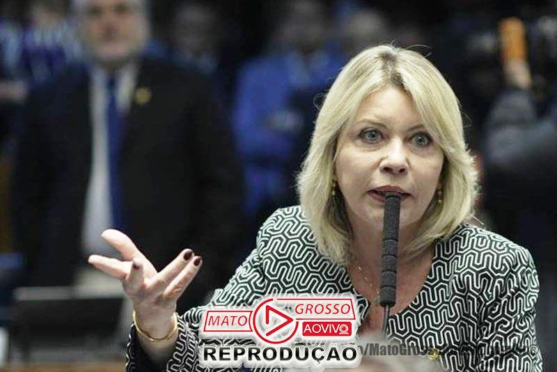 Relatório de Selma Arruda que permite demissão de servidor público por mal desempenho é aprovado no Senado 56