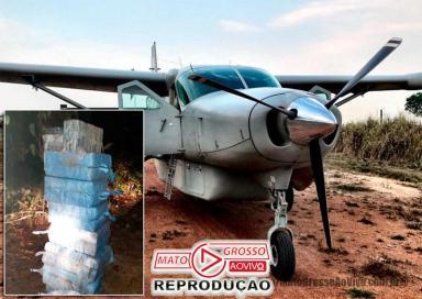 após dois dias de varredura na propriedade rural a droga foi encontrada