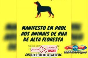 Sociedade civil e entidades de Alta Floresta se organizam para fazer manifesto em prol de animais abandonados 53