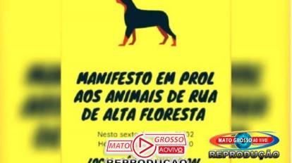 Sociedade civil e entidades de Alta Floresta se organizam para fazer manifesto em prol de animais abandonados 10