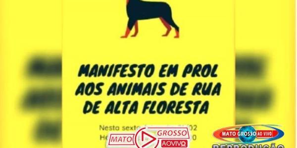Sociedade civil e entidades de Alta Floresta se organizam para fazer manifesto em prol de animais abandonados 22