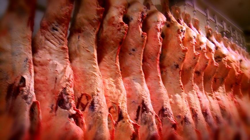 Governo de MT busca abertura do mercado chinês para exportação de carne