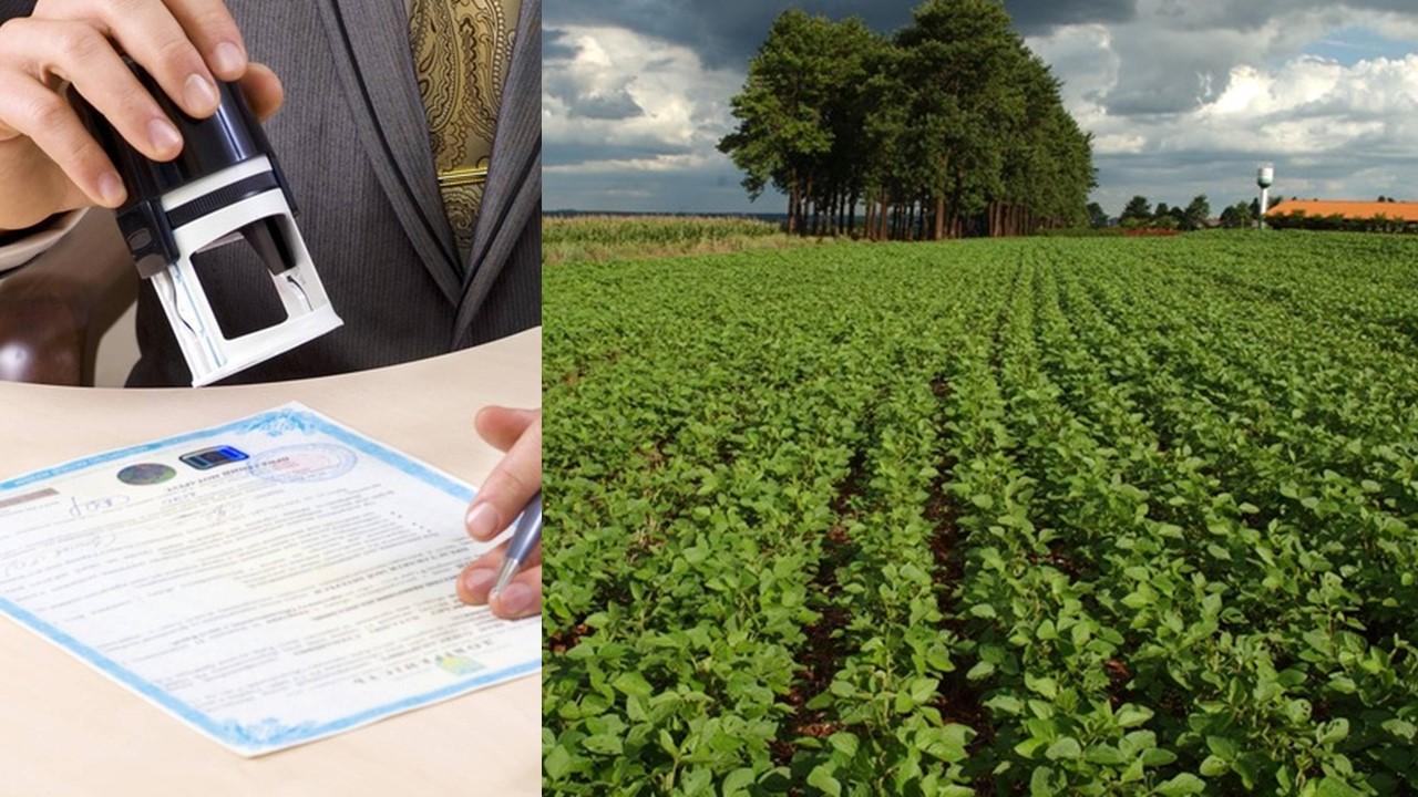 Sistema de transferência de propriedade rural em Mato Grosso é destaque em relatório do Banco Mundial