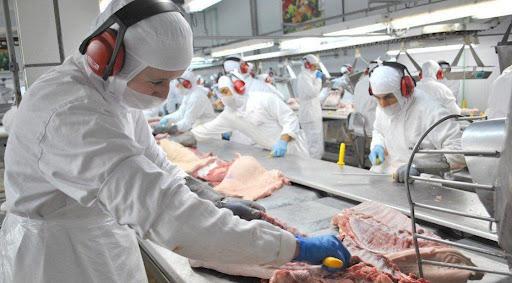 Sindicato alerta para possível fechamento de frigoríficos por falta de gado em Mato Grosso