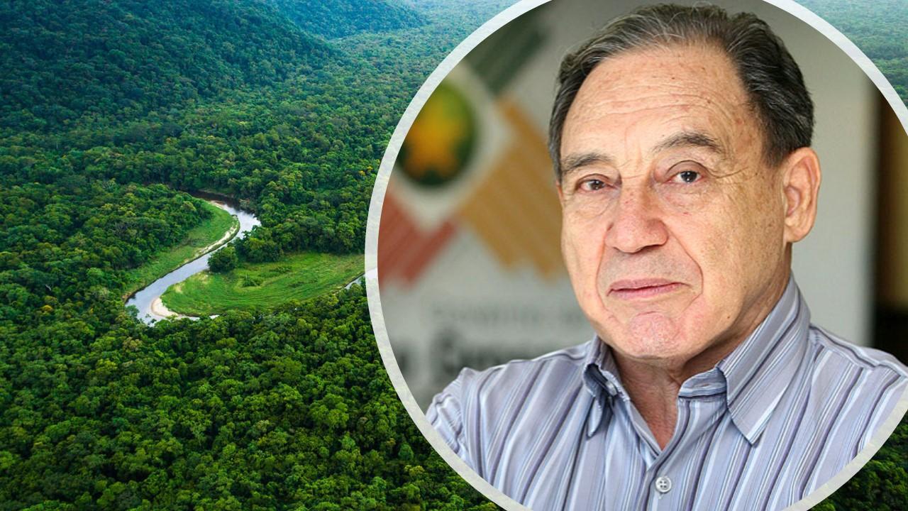 Opinião: De que Amazônia precisamos?
