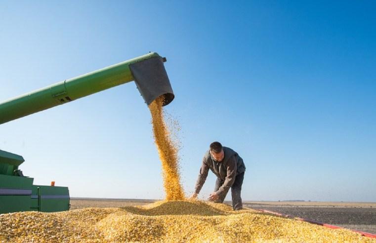 Mato Grosso conclui safra, não bate recorde e produção encolhe 3,3% em 2020/21
