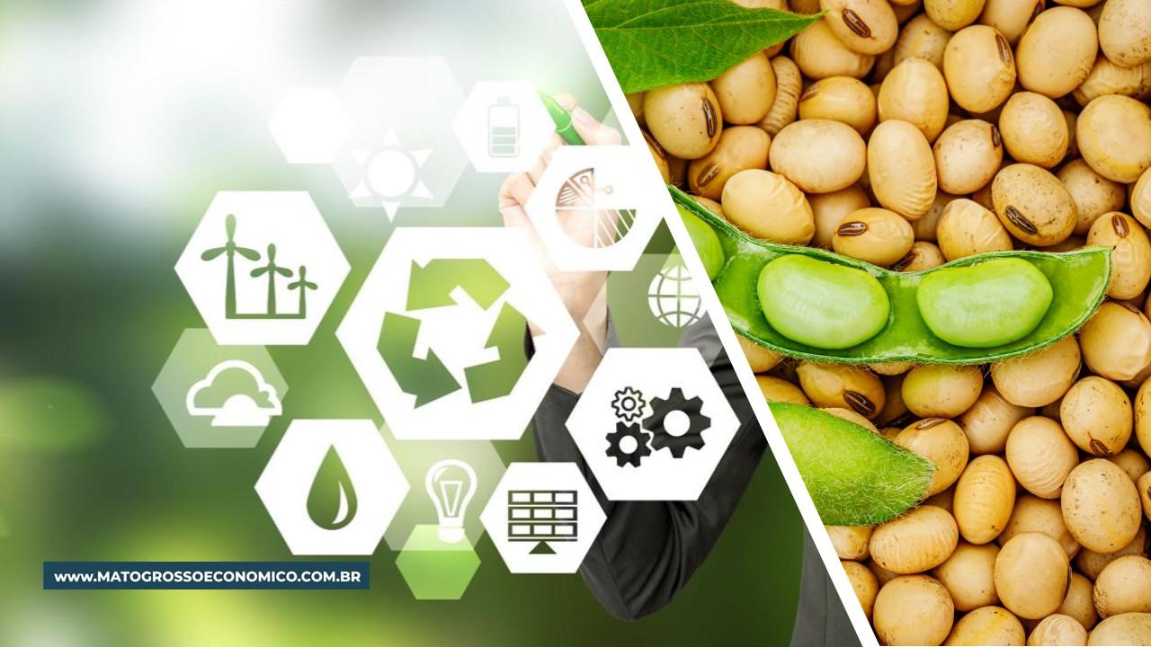 Programa Soja Baixo Carbono irá valorizar produção com tecnologias sustentáveis