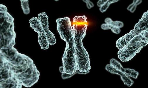 Αποτέλεσμα εικόνας για γονίδιο