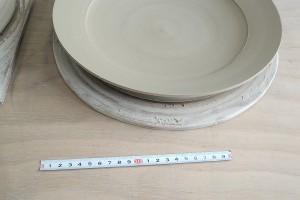 直径約30センチ