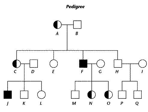 Genetics, Heredity Practice Test