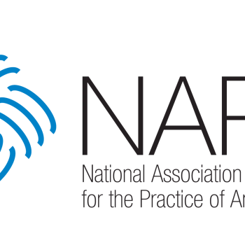 National Association for the Practice of Anthropology (NAPA) - Anthropology Mentor Program