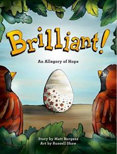 brilliant-adoption-book