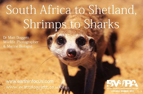 SA to Shetland 500