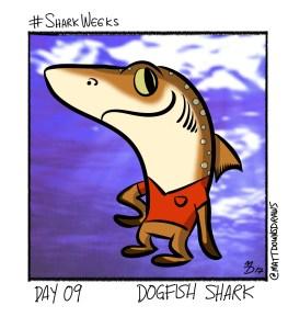 SharkWeeks_Day09