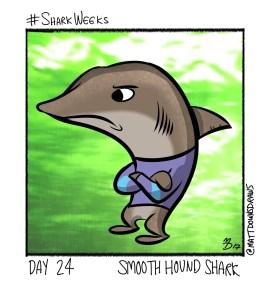 SharkWeeks_Day24