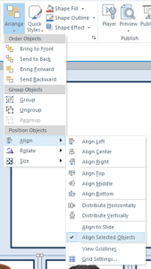 Align feature in Storyline 2