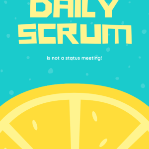 The Daily Scrum Cover