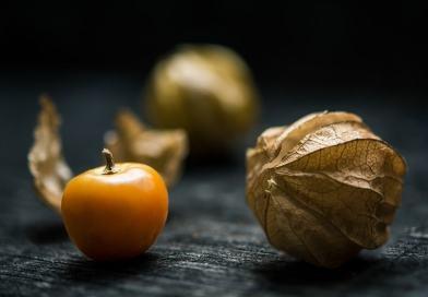 Perchè l'alchechengi fa bene – proprietà, benefici, valori nutrizionali