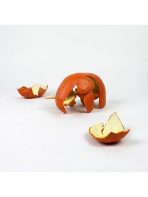 Two Orange Peels, 2003