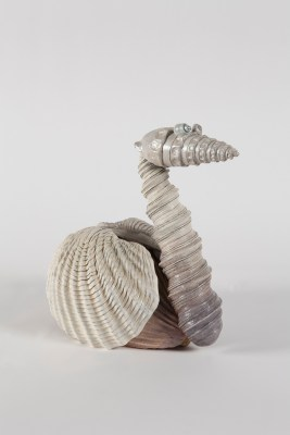 Shell Swan, 2018