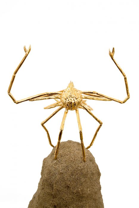 Buddha Crab, 2006 Detail