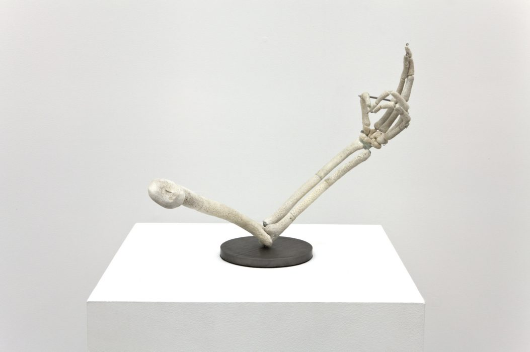 Untitled (Left Arm), 2012
