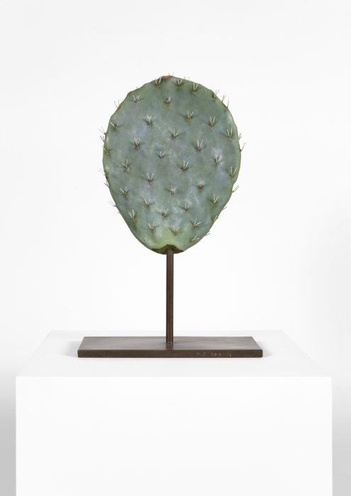 Alien Cactus, 2015 Cast bronze with oil paint 18.5 x 12 x 5.75 inches