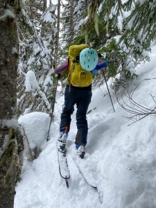 Bushwhacking to get to the ridge