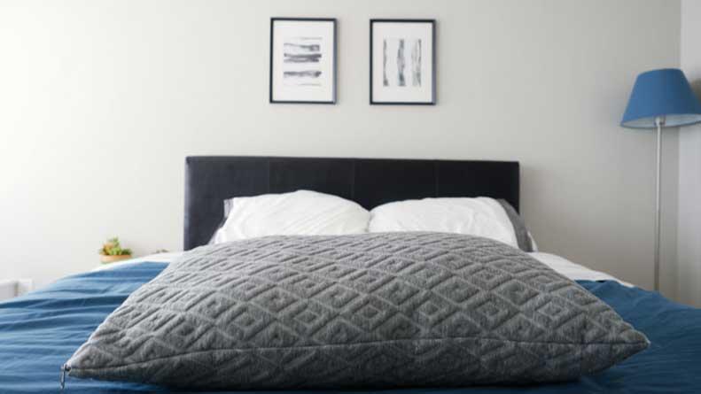 Eli  Elm Pillow Review