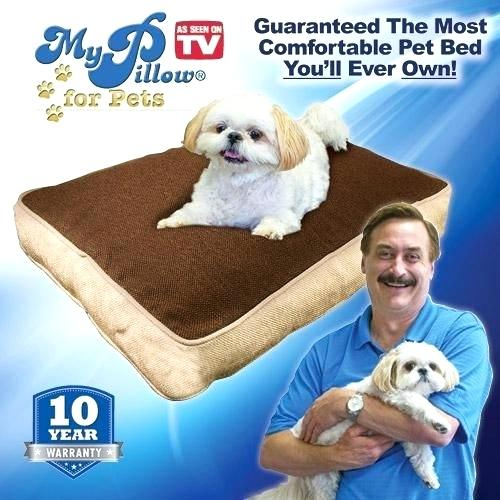my pillow dog bed review of my pillow